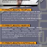 Newsletter Memox